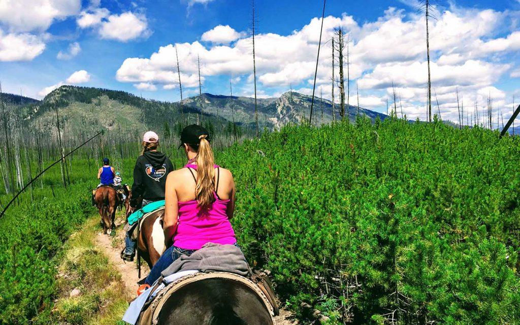 Montana horse trip