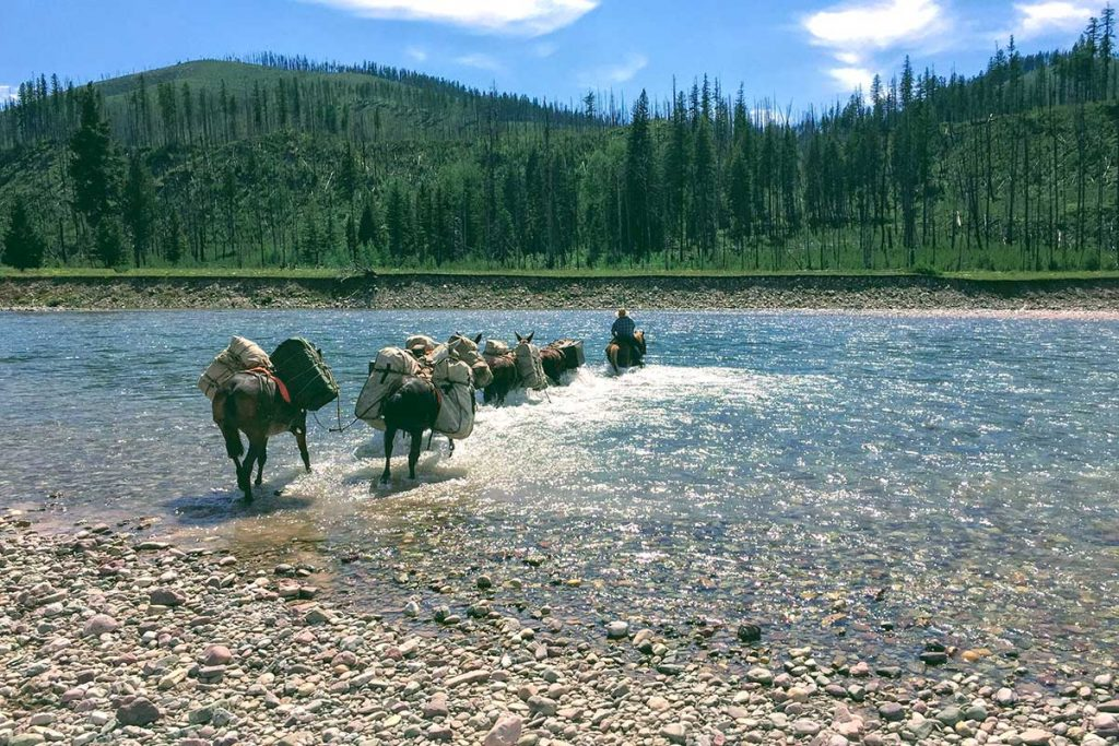Wilderness Pack Trip Crossing RIver